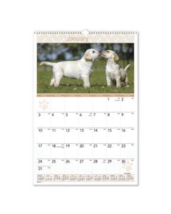 AT-A-GLANCE® Puppies Monthly Wall Calendar, 15.5 X 22.75, 2021
